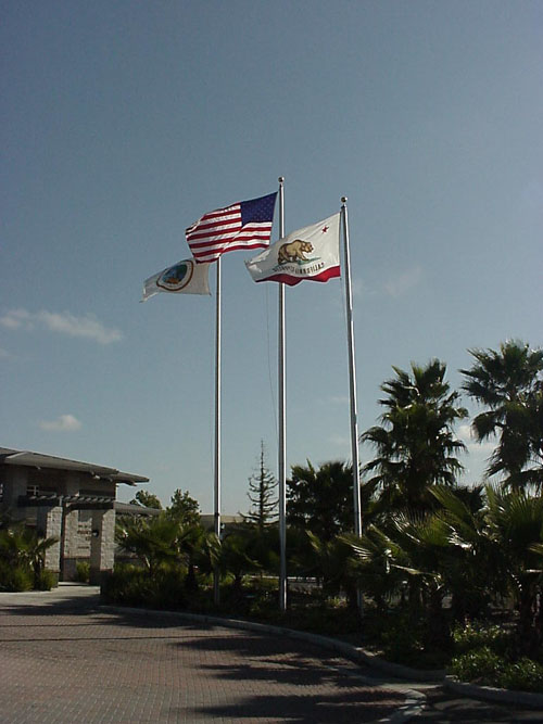 Flags in front of City Hall